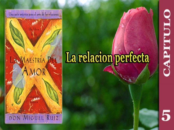 Capitulo 5 -  La relacion perfecta