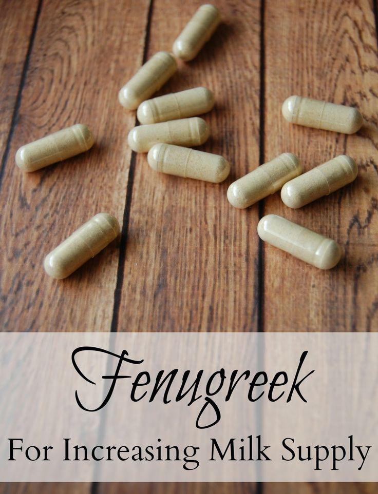 Fenugreek - For Increasing Milk Supply