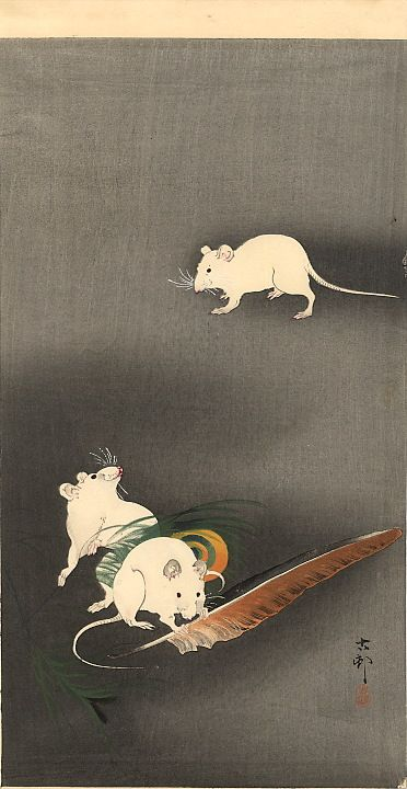 Ohara Koson - Three White Mice, 1900