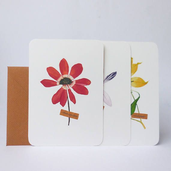 Set of 3 cards with pressed flowers