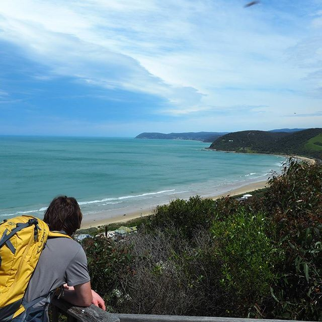 This is part of the gorgeous 180 degree view at the Moggs Creek lookout on the Great Ocean Road! Get there on a 4.8km circuit from the picnic area or take the shorter track straight up the hill from near Moggs Creek.