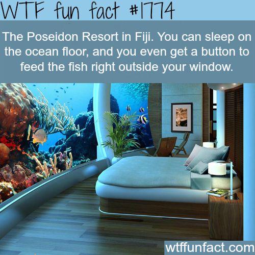 The Poseidon Resort in Fiji - WTF fun facts
