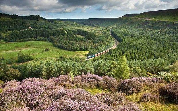 National Park focus: North York Moors