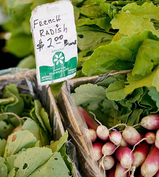 Radishes are the root of a plant that belongs to the mustard family.