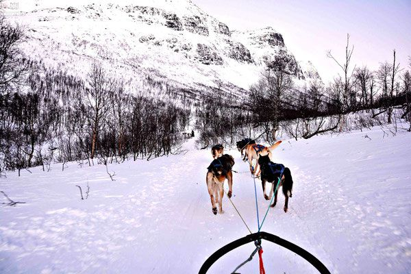 My story of visiting Camp Tamok in Arctic Norway near Tromsø, and why this was not only #1 on my list of things to do in Norway, but the top travel experience I have had to date.