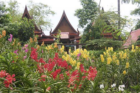 Rose Garden i Thailand