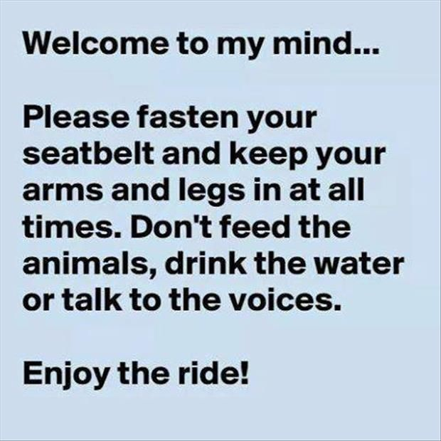 Don't feed the animals...
