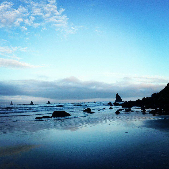 The Beautiful Pacific Coastline - Olympic National Park