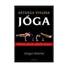 Aštánga Vinjása jóga