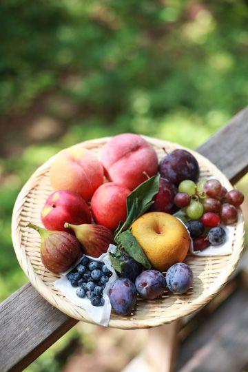 実りの秋です。信州のいいところのひとつは、野菜・果物が豊富なところ。特に果物は、プルーンやネクタリン、ルバーブなど、東京にいたときは手に入りづらかったもの...