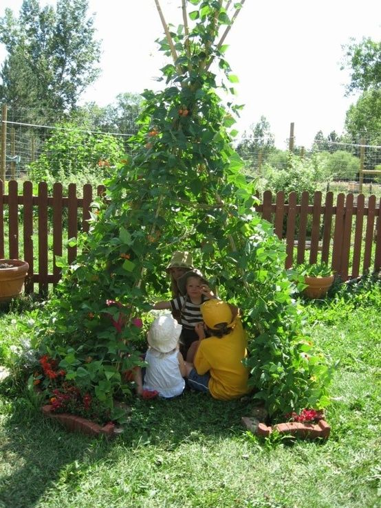 I will make this for our children. Kiddie Garden offers directions for constructing a VEGGIE TEEPEE, on which you can trellis squash, zucchini, cucumbers, pole beans, nasturtiums, peas and more! You can use any material for poles which can bear some weight – bamboo, small diameter timber, etc.