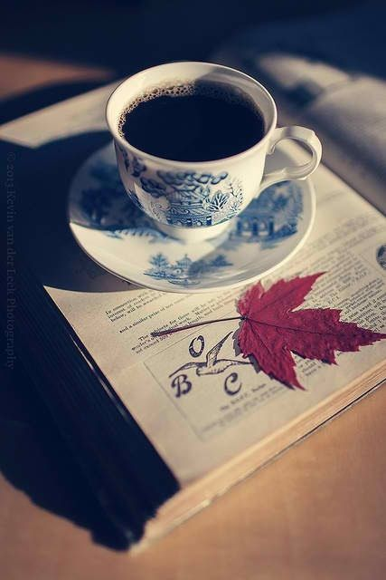 In some sort of way, this picture is gorgeous. I think the autumn connotations really make it; the red leaf, the weak sunshine filtering through... Plus the sweet teacup and saucer, the book. Reminds me of cuddling up on an autumnal evening, blanket wrapped around me and trying to make the most of the receeding weather. This is just a beautiful photo. I can't even right now!!
