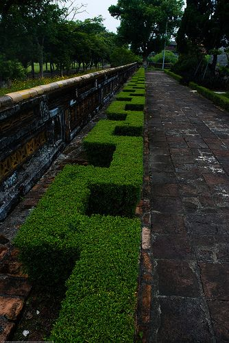 Hedges in the Imperial City in Hue, central Vietnam