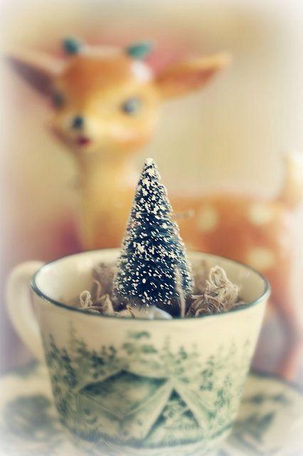 Christmas in a teacup