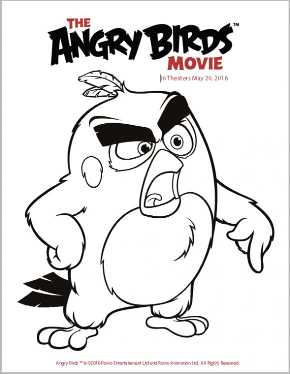 the angry birds movie trailer coloring pages and activity sheets