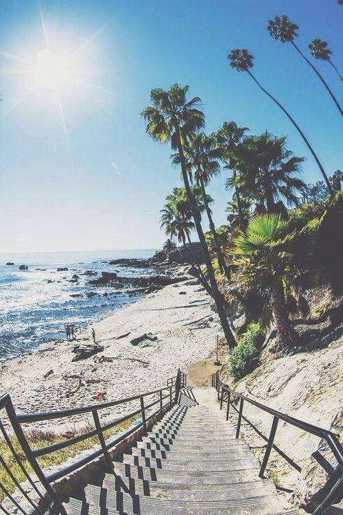 Beach please !