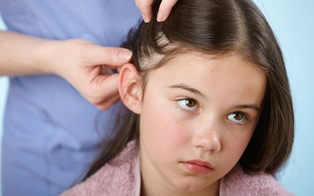 Here's the complete guide on how to use tea tree oil for lice removal. No more itching, nits & head lice with best lice removal tea tree oil remedies.