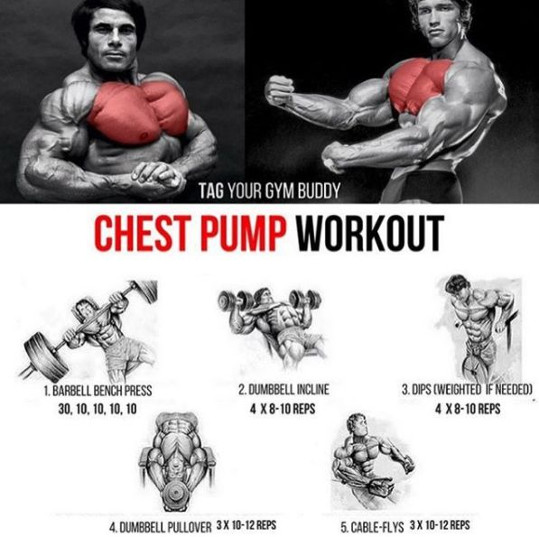 Chest Pump Workout! Tag Your Gym Buddy For Stronger Training - Yeah We Train !
