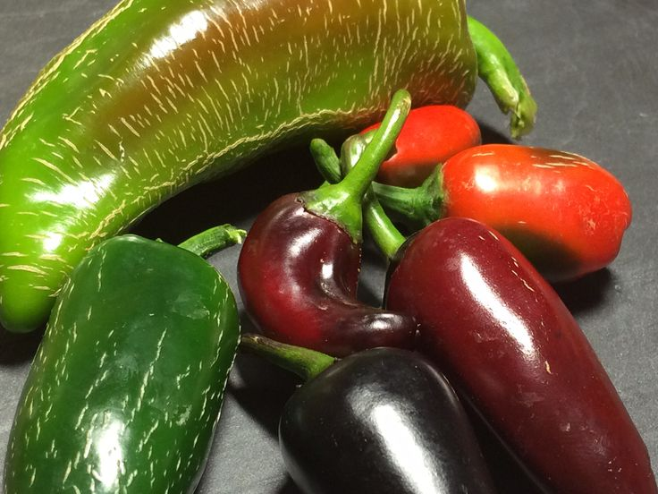 Wonderful colors of my Jalapeno hot peppers #hotpeppers #peperoncini #peperoncino #colors #color www.peperoncinipiccanti.com
