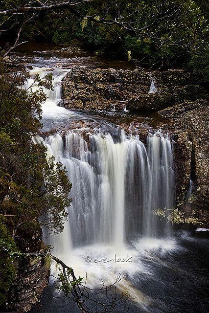 Pencil Pines Falls in Cradle Mountain-Lake St Clair National Park, Tasmania_ Australia