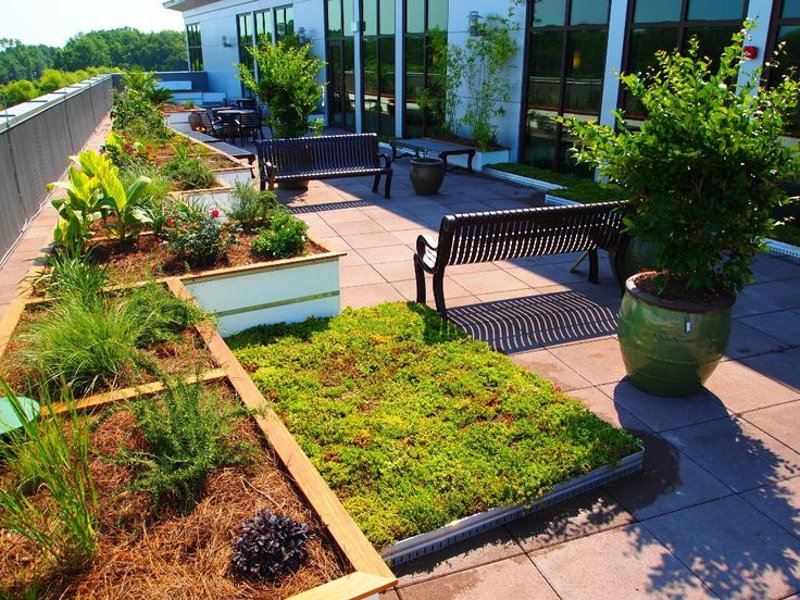110 best green roof images on pinterest green roofs green walls and rooftop gardens. Black Bedroom Furniture Sets. Home Design Ideas
