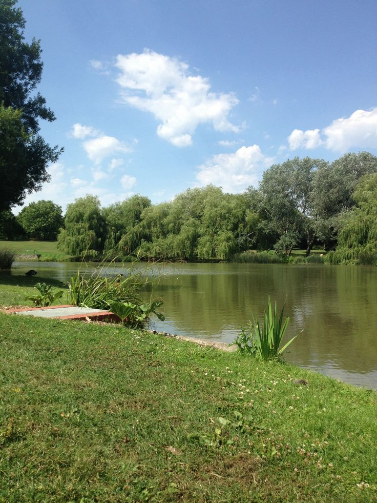 Lake At University Of Surrey Places I 39 Ve Seen And Want To See Pinterest Lakes And Surrey