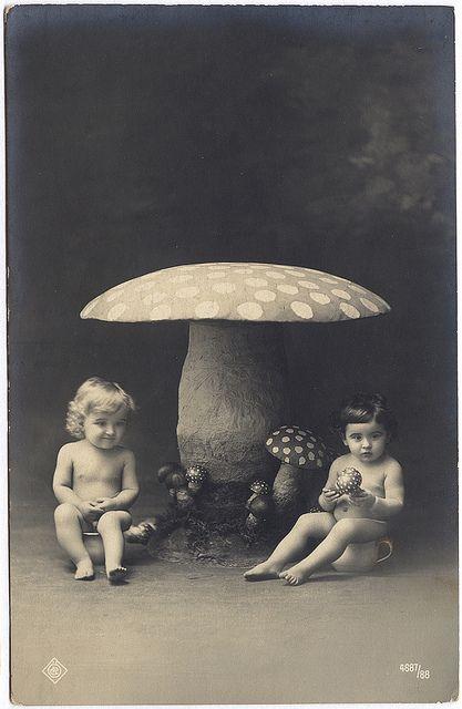 :: Dated 1917 ::: Babies, Mushroom Babies, Vintage Photos, Children, Toadstool, Things, Mushrooms