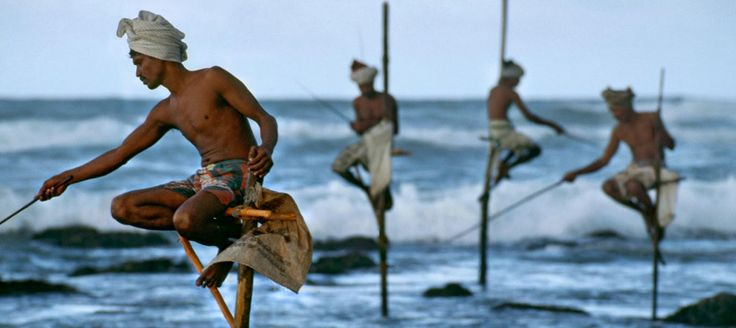 10 Days Fishing Tour in Sri Lanka, include sea, river and tanks   Tropical Way Tours