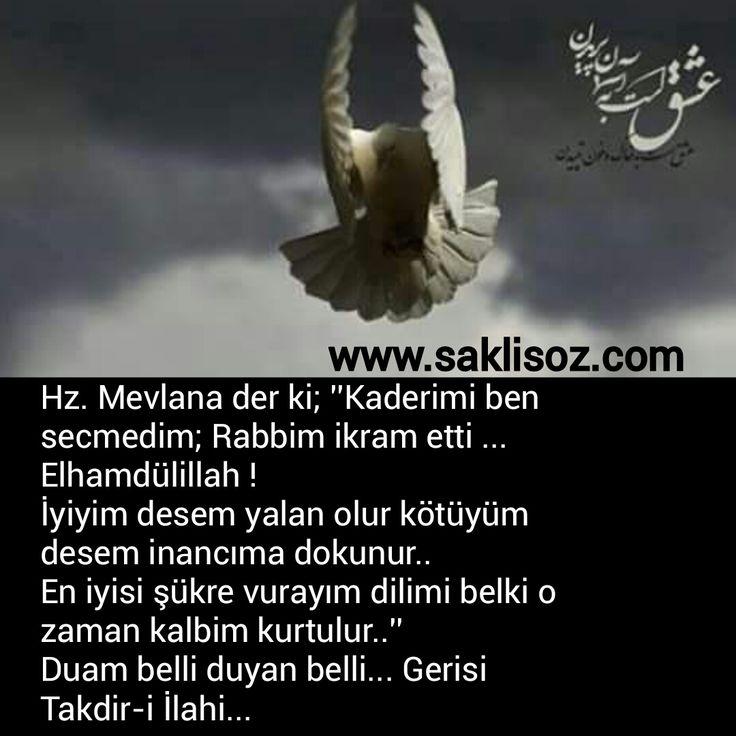 Hz. Mevlana der ki; ''Kaderimi ben secmedim; Rabbim ikram etti ... Elhamdülillah !  İyiyim desem yalan olur kötüyüm desem inancıma dokunur.....