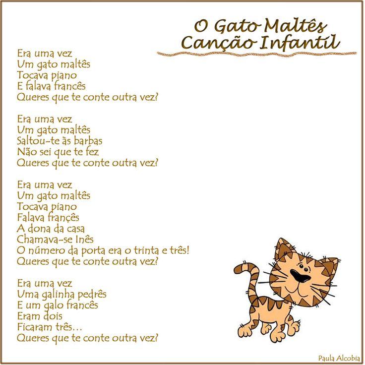 O Gato Maltês