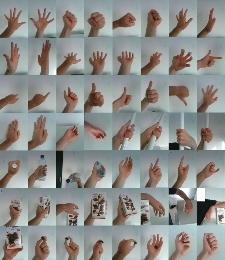 eagleracoonfox on devart, many hand references!
