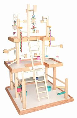 Parrotlet play gym