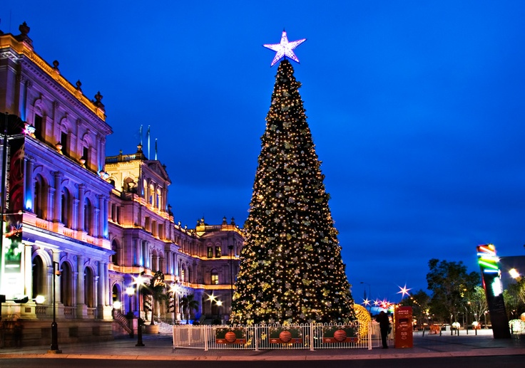 The Brisbane City Christmas Tree is the largest solar powered tree in the world. The city's Christmas tree is a sight to behold, standing 20m high and holding thousands of light bulbs over 4km of wiring.