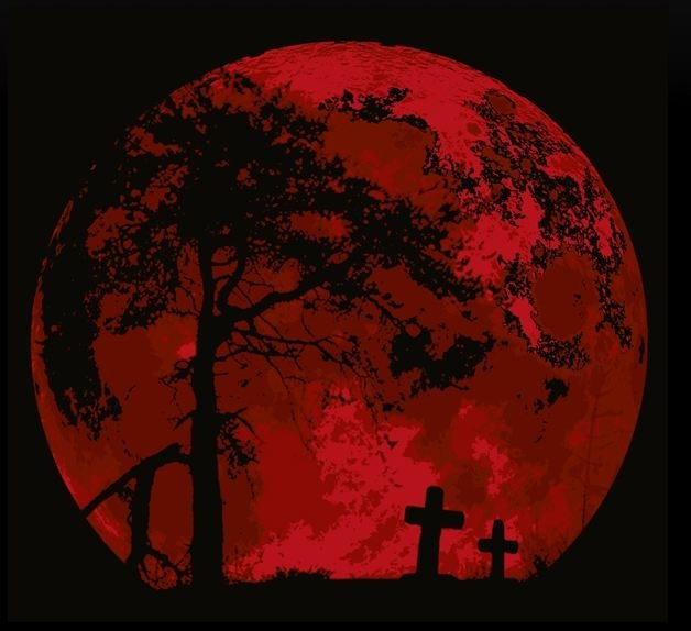 51 best Blood Moon 2014 images on Pinterest | Blood moon ...