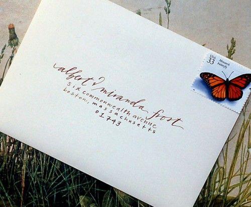 kartu undangan pernikahan sudah siap dikirimkan dengan amplop dan juga pranko butterfly