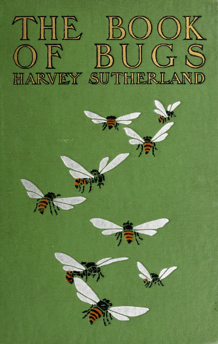 'the Book Of Bugs' By Harvey Sutherland Street & Smith; New York