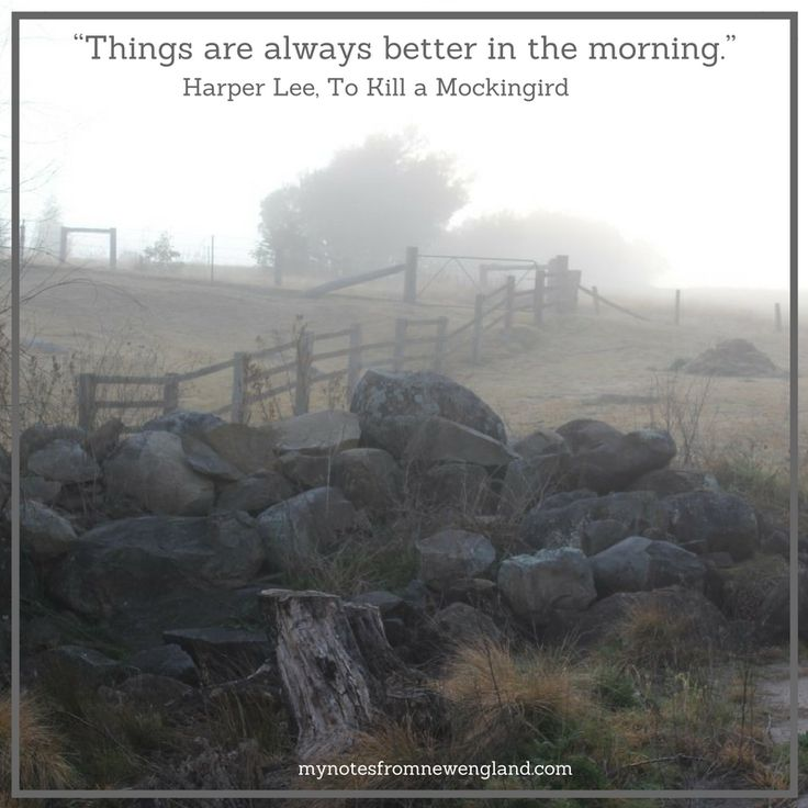 """Things are always better in the morning."" Harper Lee, To Kill a Mockingbird"