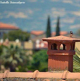 Un tetto e una vista meravigliosa! #photobyme