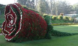 Mysore And Ooty 4 Nights Package