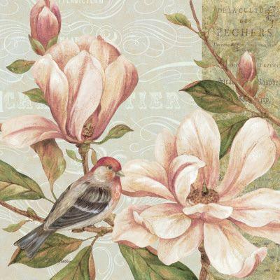 Magnolia Collage II Lámina