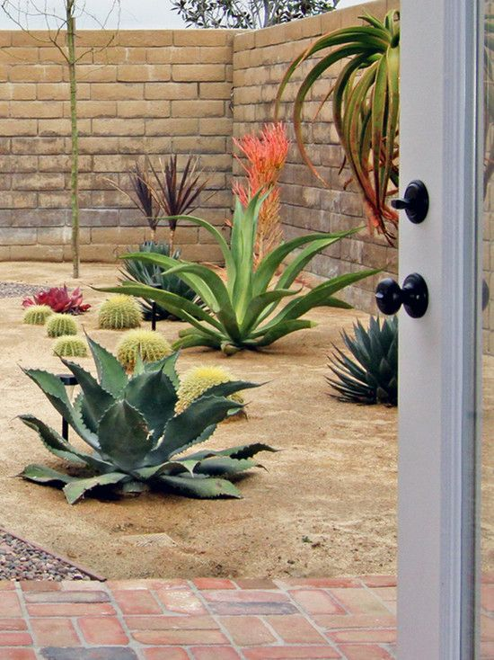 Had to share this lovely peaceful garden-each plant seems to be presented as if it were a museum piece! 492 xeriscape design photos--thanks houzz.com!