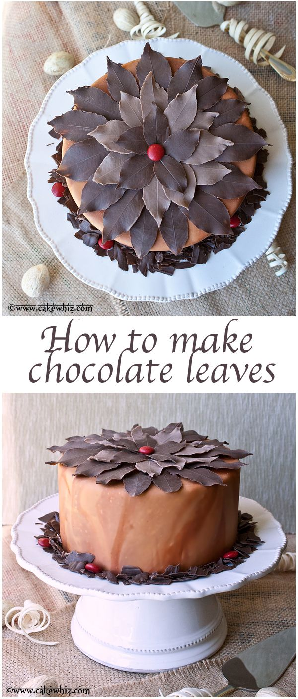 Learn to make CHOCOLATE LEAVES! This is the easiest and most beautiful way to decorate your cakes and cupcakes. From cakewhiz.com