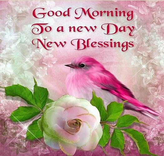 Morning. new day. new blessings