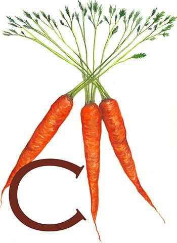 "Katie Drum Original Illustration ""C is for Carrots"" www.thenaivetree.com"