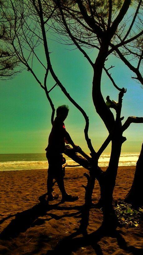pantai baru bantul Yogyakarta #beach#yogyakarta #Yogyakarta beach