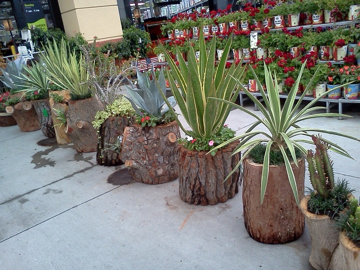 24 Creative Garden Container Ideas (with pictures) | Tree stump ...