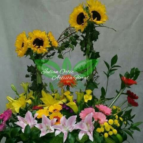Florista Julian Ortiz. Whats app 3138771540 Pereira colombia