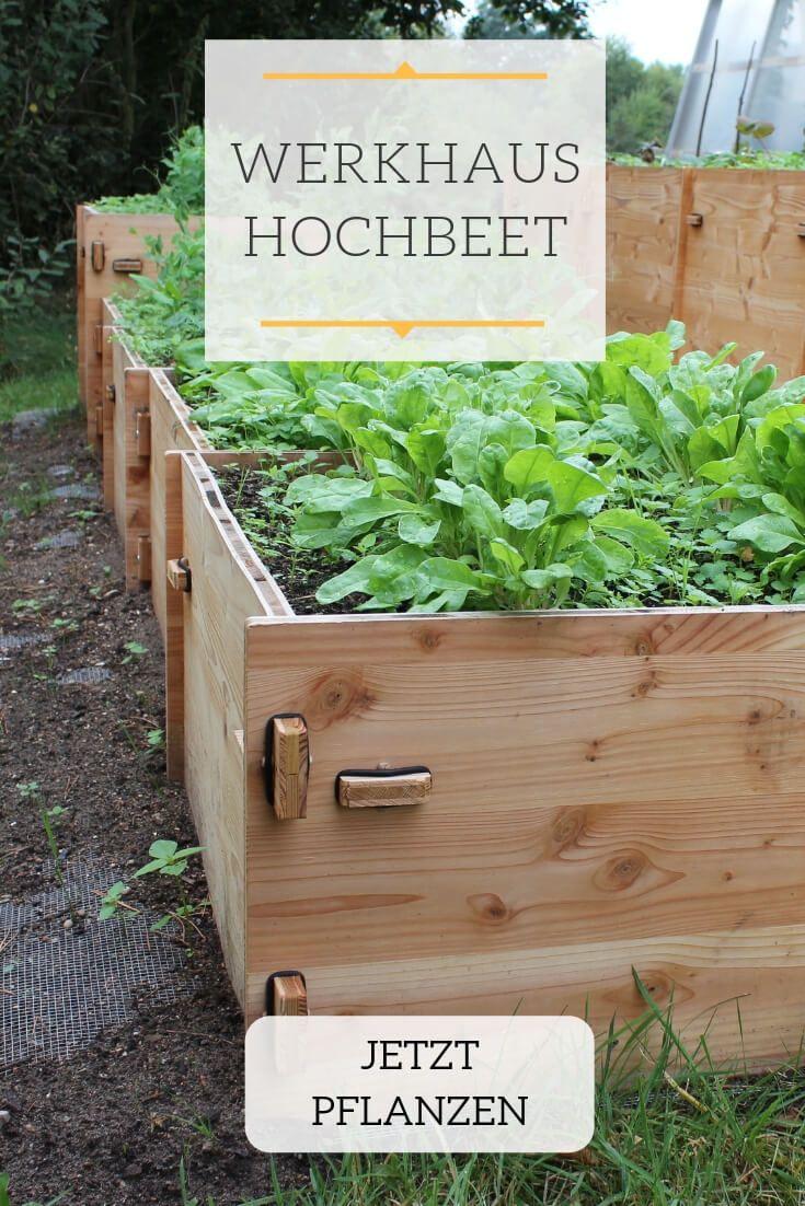 Hochbeete Mit Stecksystem Hochbeet Pflanzen Garten Design