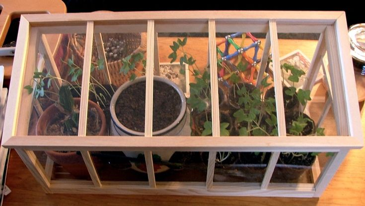 Indoor DIY Greenhouse - http://blacklemag.com/living/how-to-build-an-indoor-greenhouse/