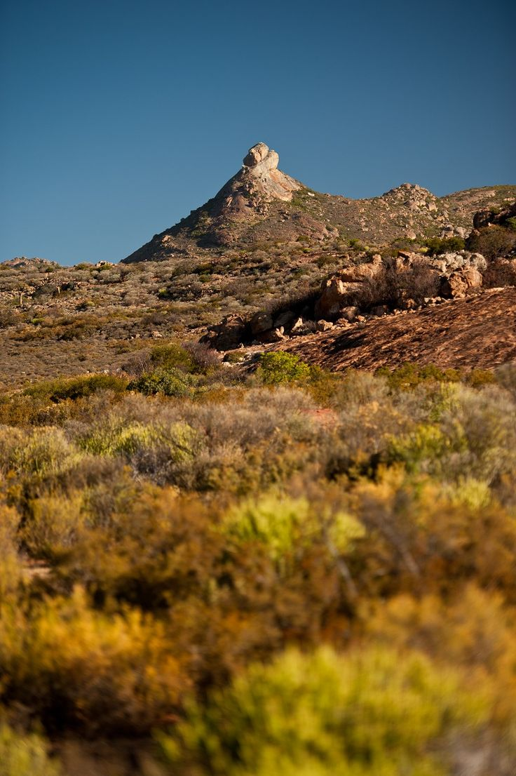 Namaqualand -  The back roads of Namaqualand
